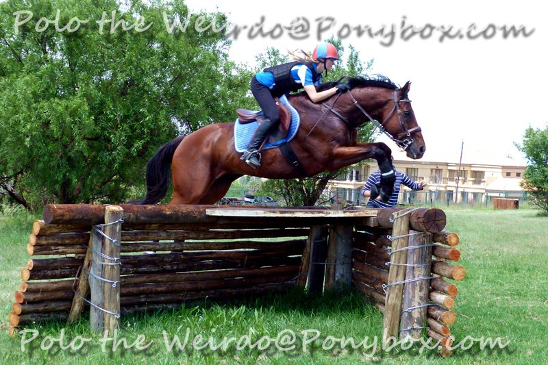Cross Country Corner Jump