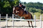 Flatwork for Showjumping