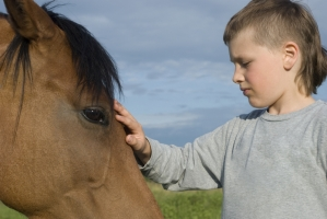 The Ethics of Hippotherapy