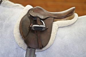 Sizing English and Western Saddles