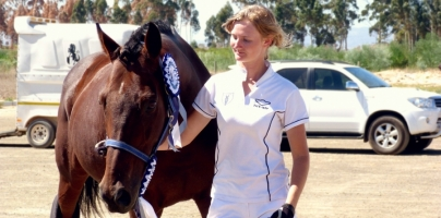 The Unnoobification Epiphanies of a Dressage Noob – Canter Transitions