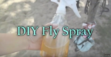 What is in Horse Fly Spray