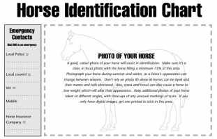 Horse Identification Records and Templates