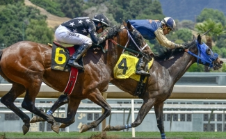 27 Charged in Huge Race Horse Doping Scandal