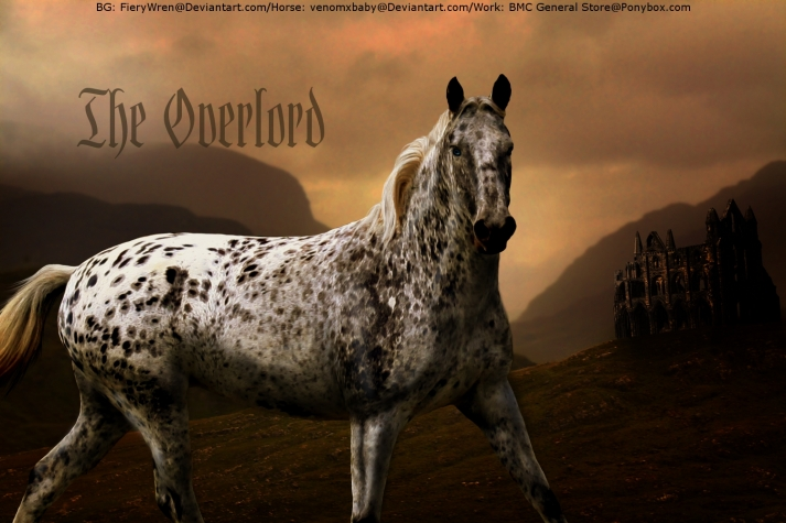 Popular PonyBox Horse Breeds
