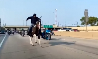 Census Cowboy Puts Horse in Peril After 7-Mile Gallop