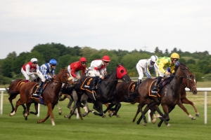 Hard to Watch as Man Jumps into Horse Race Final Stretch