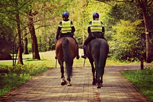 Two Mounted Police Officers Lose Their Horses